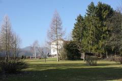 Garten und Haus von vorne